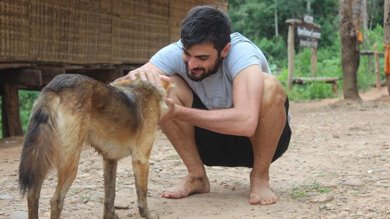 Un chico acaricia a un perro