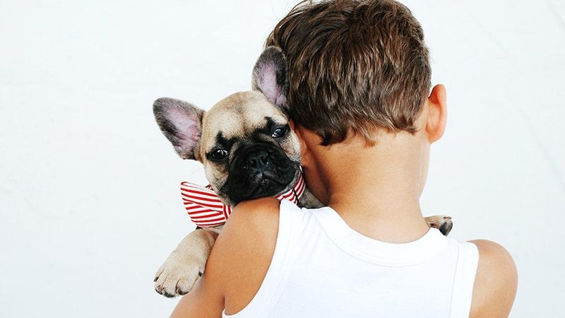 Un niño coge en brazos a un perro