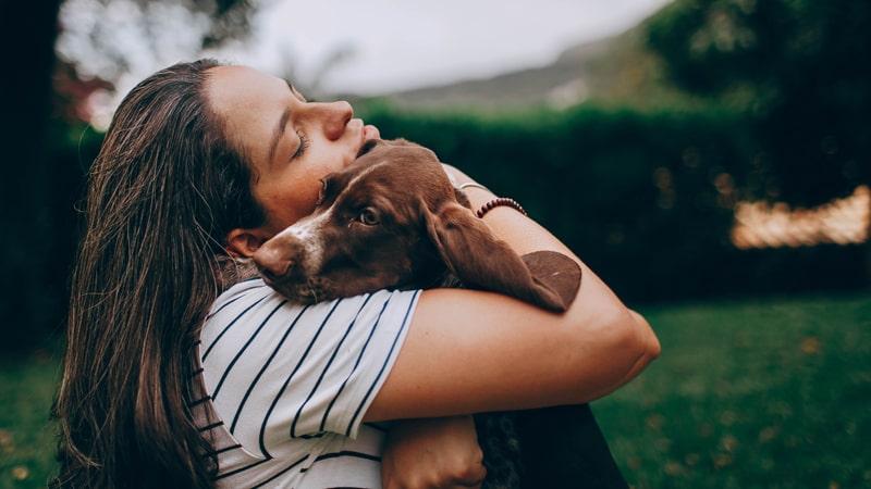 Adiestramiento positivo con perros