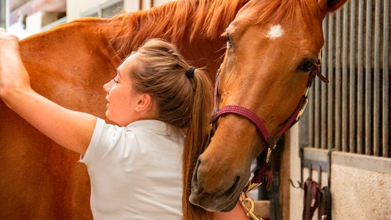 Veterinaria tocando la espalda de un caballo