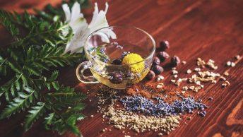 hierbas-semillas-fitoterapia-min