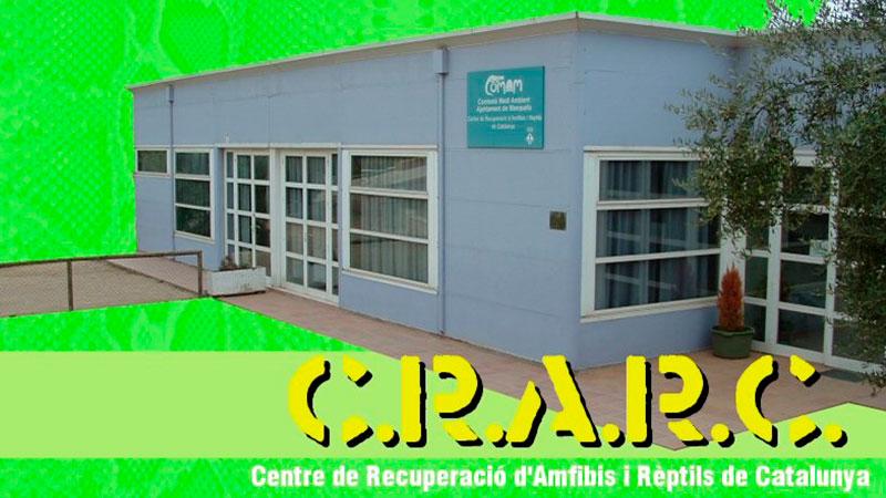 CRARC-Centre-recuperacio-amfibis-reptils-Catalunya