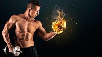 Los hidratos de carbono son fundamentales para el buen rendimiento deportivo|alimentos-con-alto-contenido-en-hidratos-de-carbono|consumo de hidratos de carbono para el ejercicio