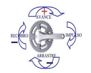 Pedaleo-redondo-piston-ciclo-indoor-CIM-Formacion