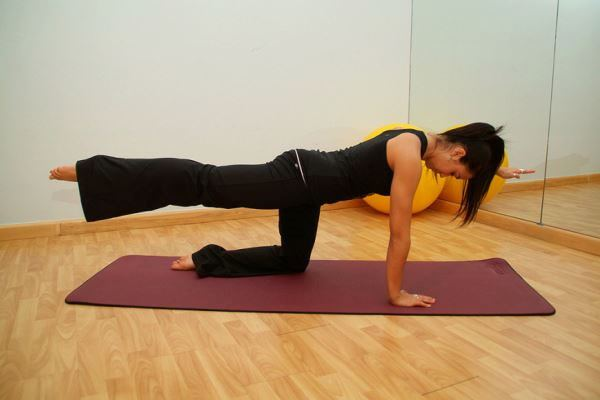 Principios-basicos-del-metodo-Pilates-1|Principios-basicos-del-metodo-Pilates-2|aumentar-fuerza-pilates