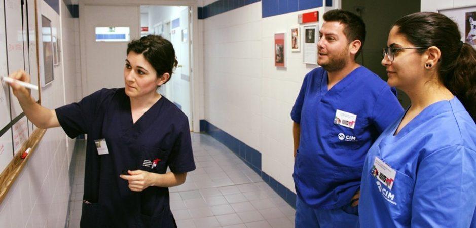 Auxiliares veterinarios de CIM que trabajan en clínicas veterinarias 4