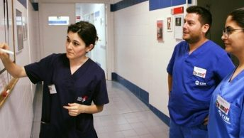 prácticas en UMU|equipoveterinariaborrell|equipoclinicaagora|equipoauna