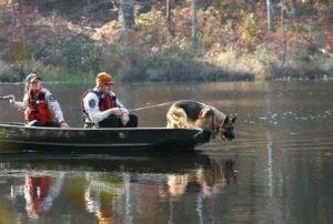 busqueda-y-rescate-caninos