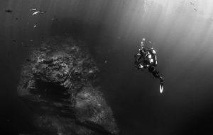 acuario-vida-marina-protegida