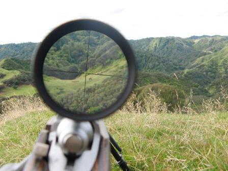 cazando|caza|cazador|cazadores