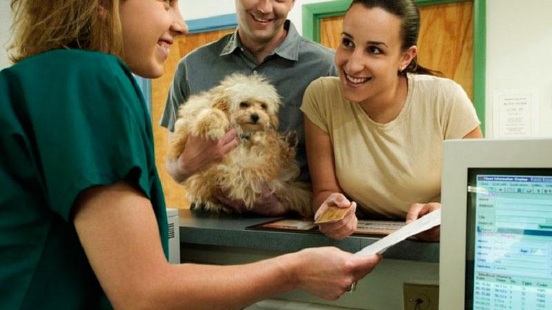 clientes enfadados en la clínica veterinaria