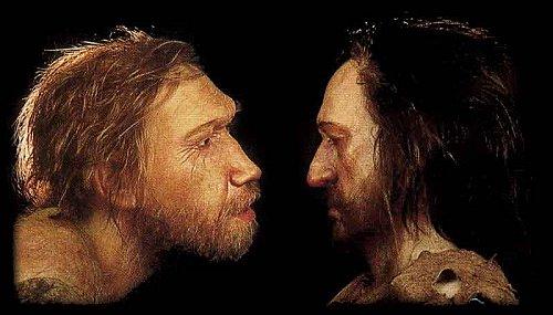 comparativa-neandertal-homo-sapiens