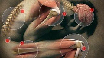 contraindicaciones-masaje-CIM-Formacion|contraindicaciones-quiromasaje-trombosis-3-CIM-Formacion|contraindicaciones-quiromasaje-infeccion-1-CIM-Formacion|contraindicaciones-quiromasaje-trombosis-2-CIM-Formacion