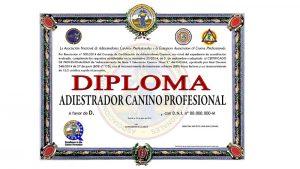 Diploma de adiestrador canino profesional con la acreditación de la ANACP