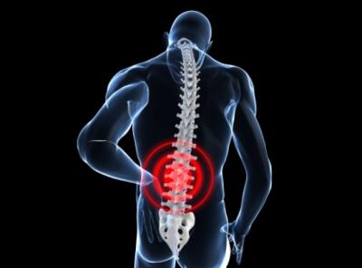 dolores en nuestra espalda columna vertebral vertebras columna vertebral