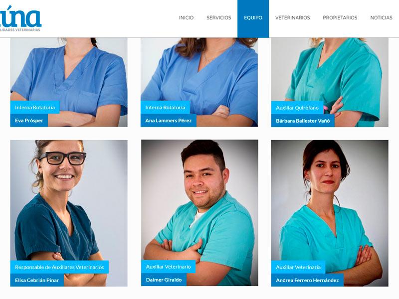 Auxiliares veterinarios de CIM que trabajan en clínicas veterinarias 3