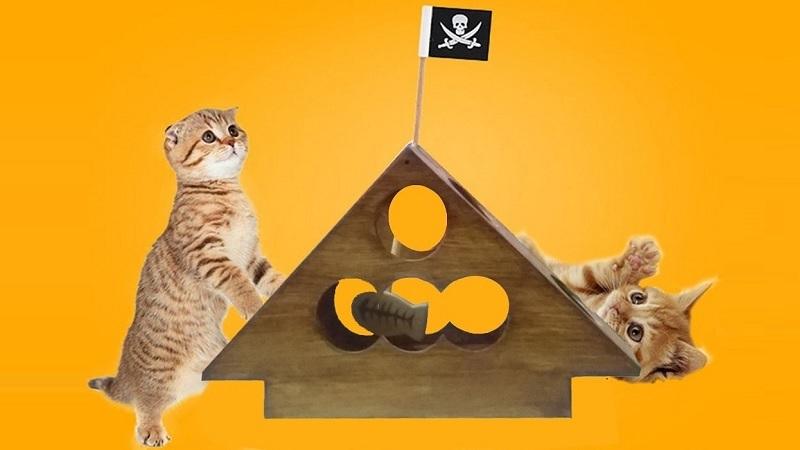 estimulación para prevenir la demencia en gatos