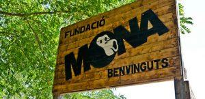 Fundación Mona