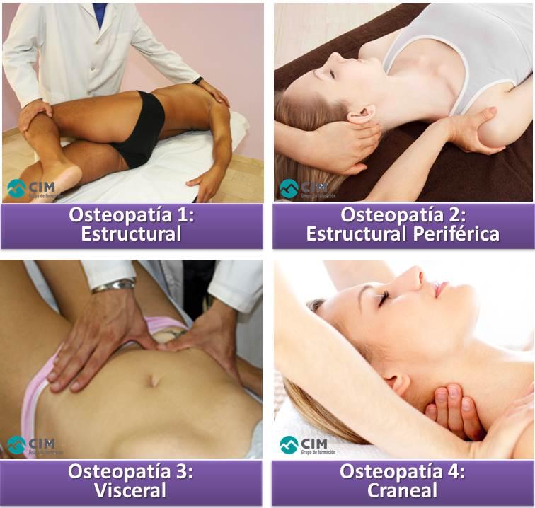 Origen y principios de la osteopatía 1