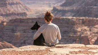 perro-persona-sentados