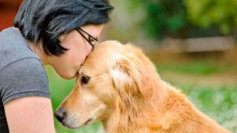 perros-mas-dispuestos-a-colaborar-con-humanos|perro-abrazado-a-mujer-anciana