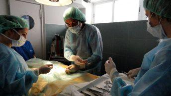 quirofano-veterinario-min