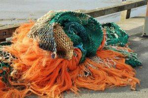 red de pesca afecta a la vida marina