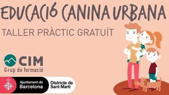 Taller de educación canina urbana - Ayuntamiento de Barcelona y CIM Formación|manuel-balibrea-y-alumnos-de-cim-formacion-en-taller-de-educacion-canina-urbana|taller-canino-gratuito-min
