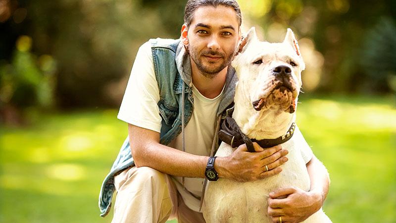 tenencia-responsable-y-cuidados-animales|caudectomia-mutilacion-canina-de-la-cola|bienestar-animal