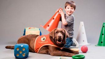 Niño con tdah juega con un perro de asistencia