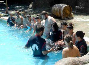 visita-rio-safari-elche