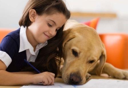 Los animales ayudan a los niños a aprender 12
