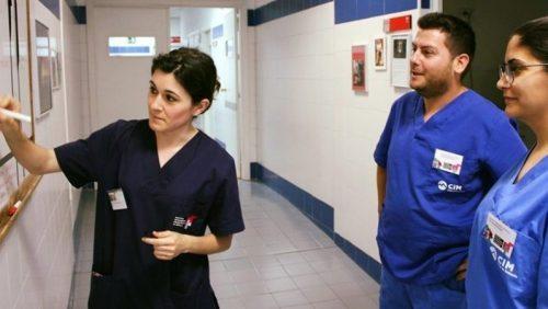 Auxiliares veterinarios de CIM que trabajan en clínicas veterinarias 20