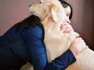 abrazando perro