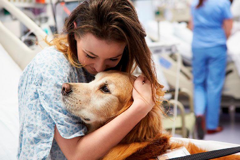 Técnico en Terapia Asistida con Animales